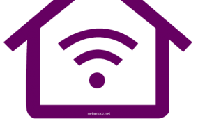 ایمن سازی شبکه های وایرلس خانگی