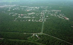 سیسکو و هوشمند سازی جنگل ها